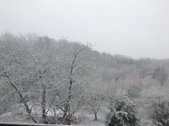 neigemars