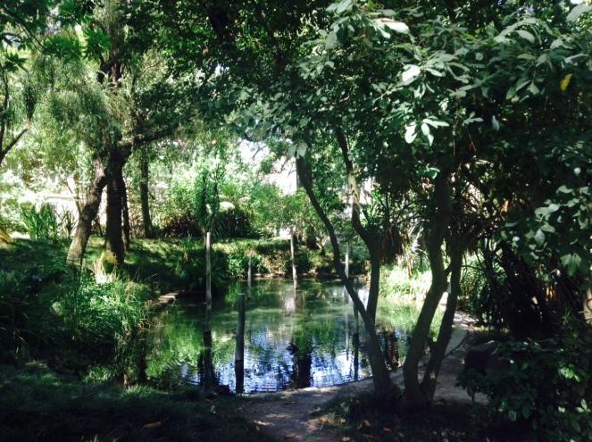 jardin-botanique-lisbonne